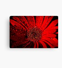 Red Raindrops Canvas Print