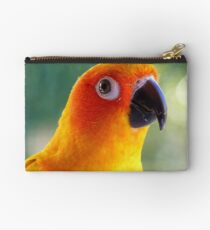 I Might Be Up To Mischief! - Sun Conure NZ Studio Pouch