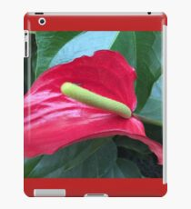 Anthurium Beauty III If you like, purchase, try a cellphone cover thanks! iPad Case/Skin