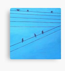 Birds, Wires 8 Canvas Print