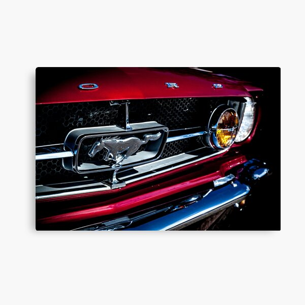1964.5 Ford Mustang Canvas Print