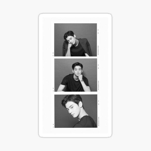 Tira de fotos de Cha Eunwoo Pegatina