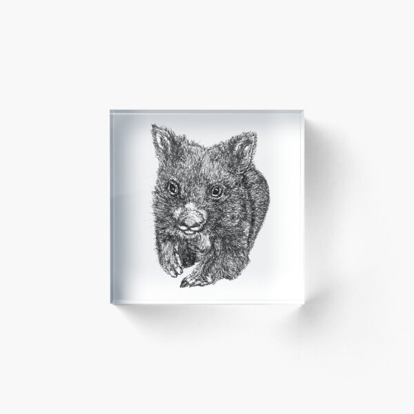 Bill the Baby Wombat Acrylic Block