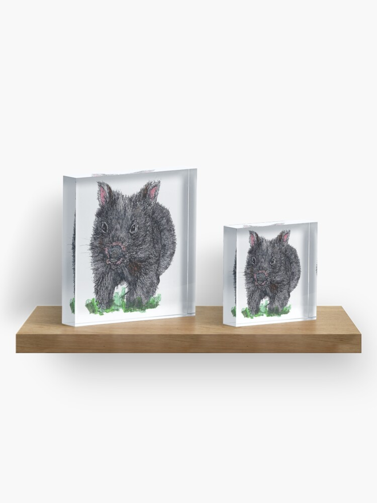 Alternate view of Billie the Baby Wombat Acrylic Block