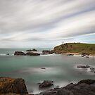 Spiky Beach, Swansea, Tasmania #4 by Chris Cobern