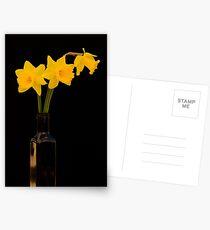 Daffodils 2 Postcards