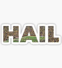 Hail Michigan Fußball Sticker