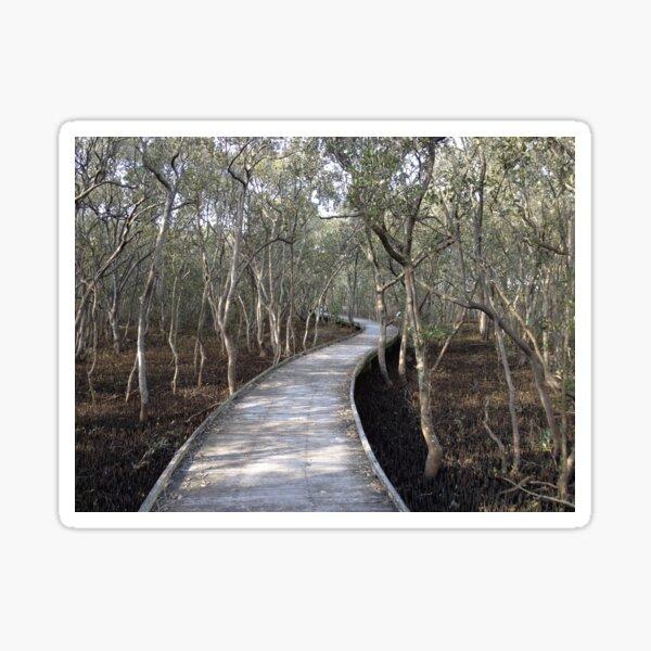 Mangrove boardwalk Sticker