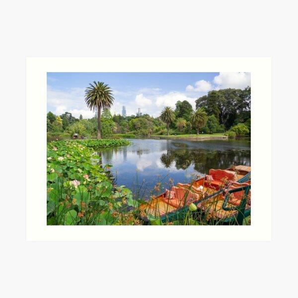 ORNAMENTAL LAKE AT MELBOURNE BOTANIC GARDENS Art Print