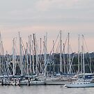Masts against a Back-lit Sunset. Geelong Waterfront. Vic. by Rita Blom
