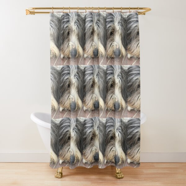 Bearded Collie Nap Time - Always got one eye open just in case! Shower Curtain
