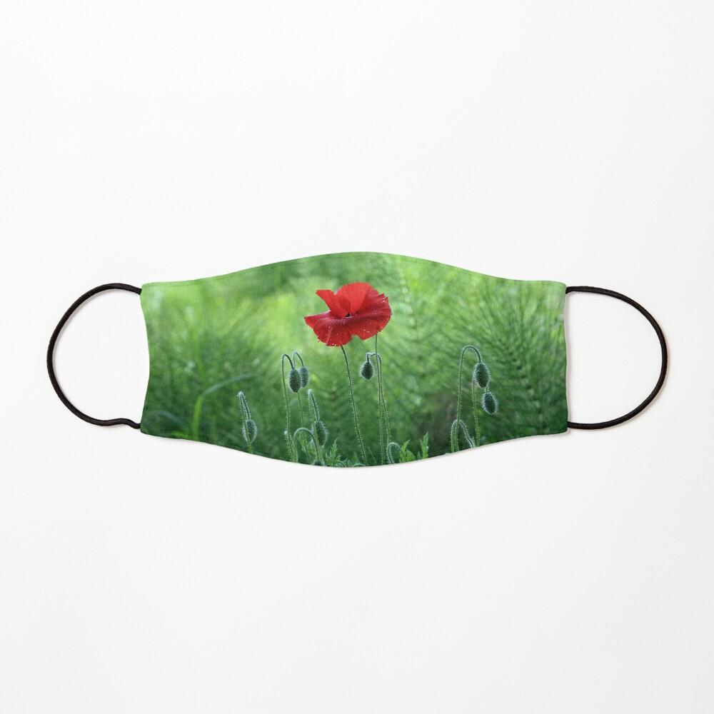 www.lizgarnett.com - Kent Poppy 1 Mask