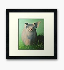 Pig in the grass Framed Print