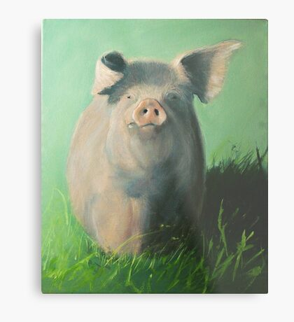 Pig in the grass Metal Print