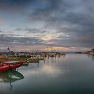 Napier Port by Linda Cutche