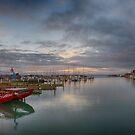 Napier Port by Linda Cutche