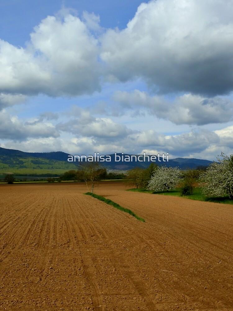 Rural scenery by annalisa56