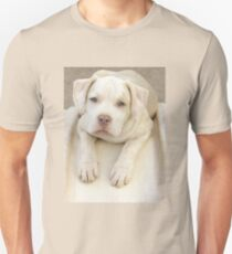 Will You Take Me Home? T-Shirt