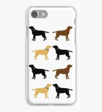 Labradors iPhone Case/Skin