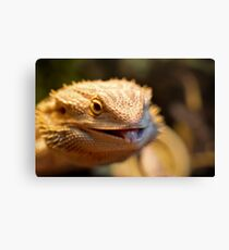 Cheeky Smaugling's Tongue Canvas Print