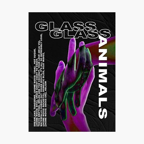 Glass Animals Photographic Print
