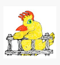 Chicky Photographic Print