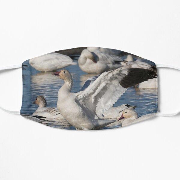 Snow Goose Celebration  Mask