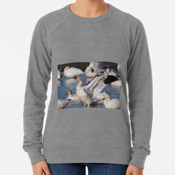 Snow Goose Celebration  Lightweight Sweatshirt