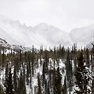Snowy Range by Eric Glaser