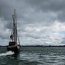 Sailing Into the Storm by Georgia Mizuleva