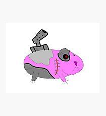 Cyborg Guinea Pig Photographic Print