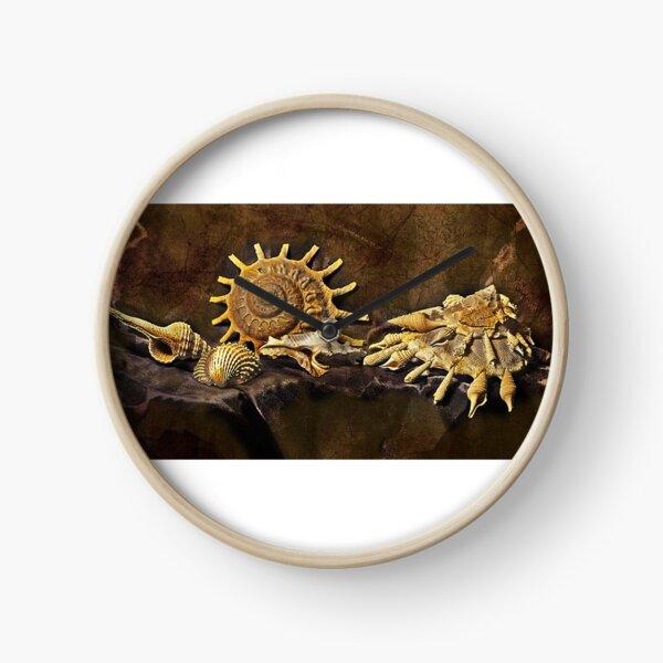 coquillage Horloge