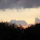 Sunset Before The Storm by trisha22