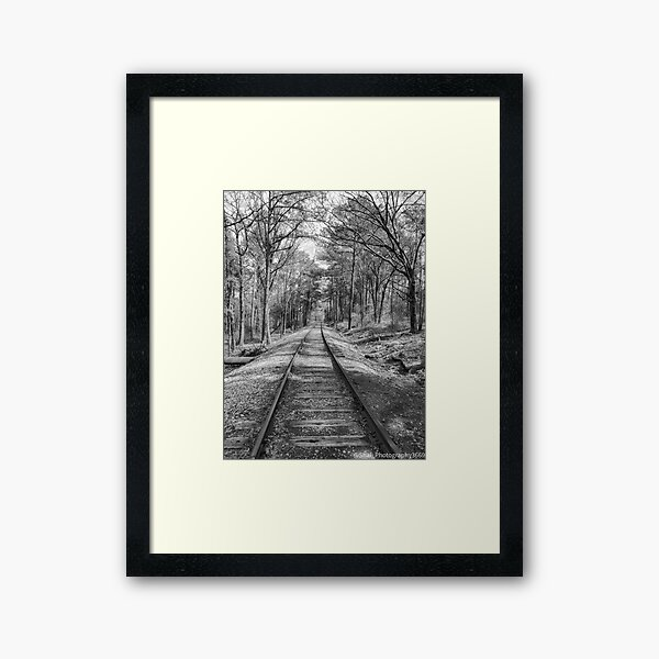 Tracking Nature Framed Art Print