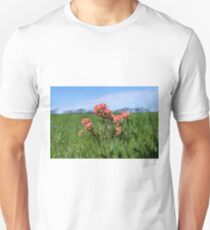 Beautiful Indian Paintbrush flowers closeup Unisex T-Shirt