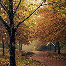 Autumn Fairytale by yolanda