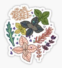 mysterious herbs Sticker