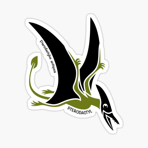 Pterodactyl Dinosaur Green Silhouette with Name Artwork Sticker