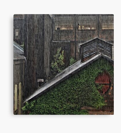 Hard Rain Canvas Print