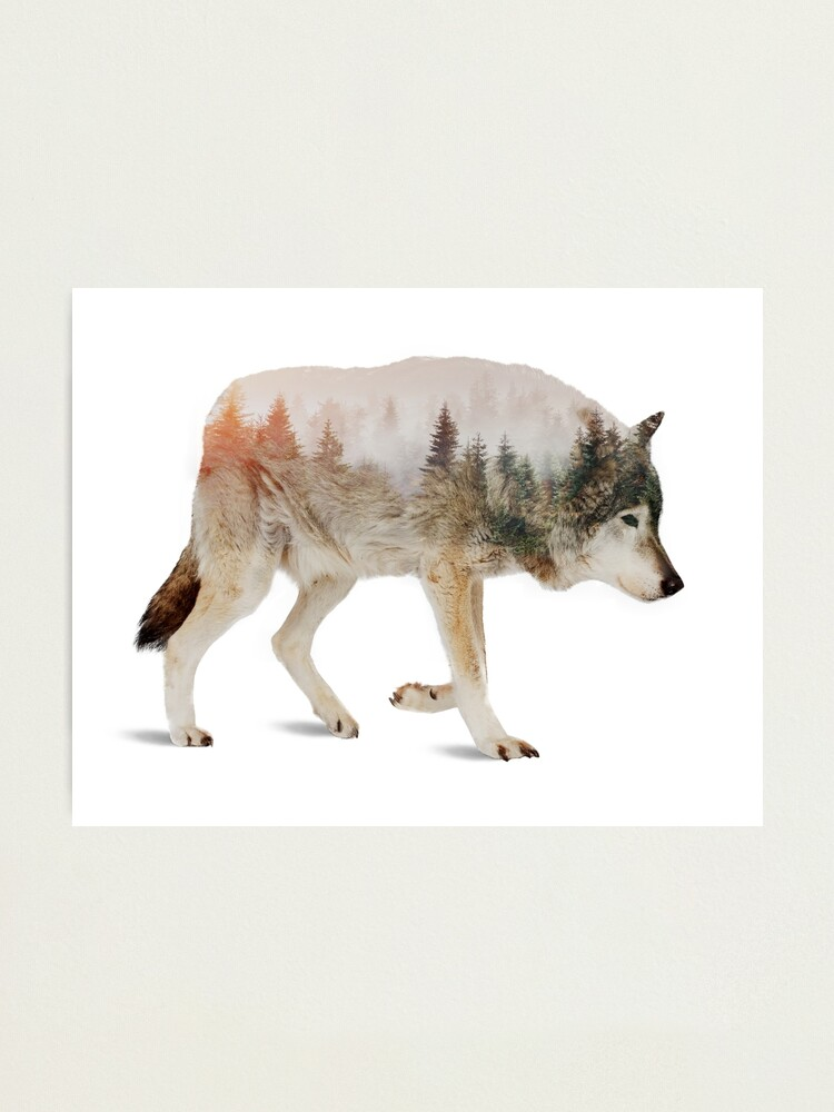 Alternate view of Wolf Photographic Print