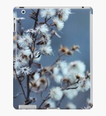 Peaceful Nature iPad Case/Skin