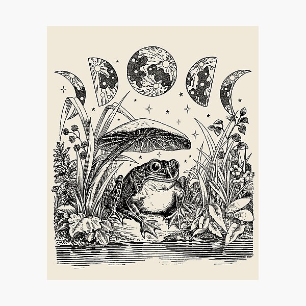Cute Cottagecore Aesthetic Frog Mushroom Moon Witchy Vintage Photographic Print