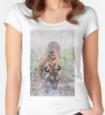 Young Bengal Tiger Women's Fitted Scoop T-Shirt