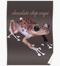 Chocolate Chip Coquí Poster