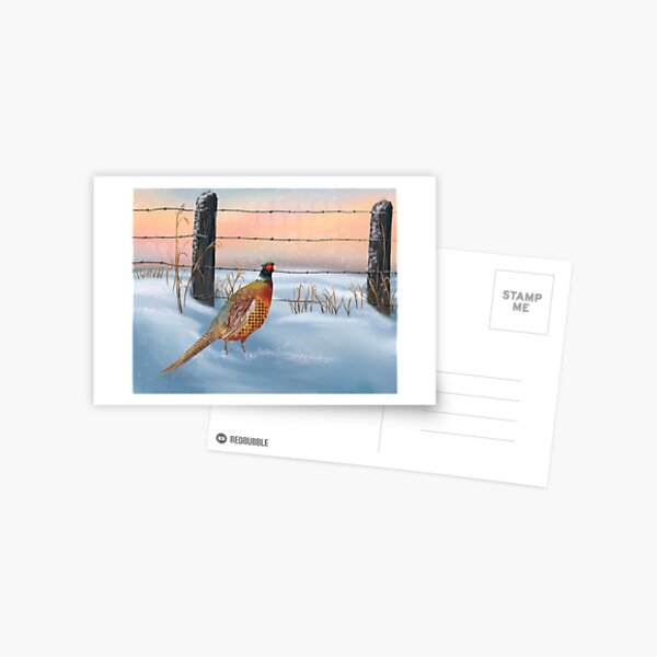 Pheasant in the Snow Postcard