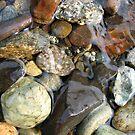 Rocks at the Lake Shore by Janice Dunbar