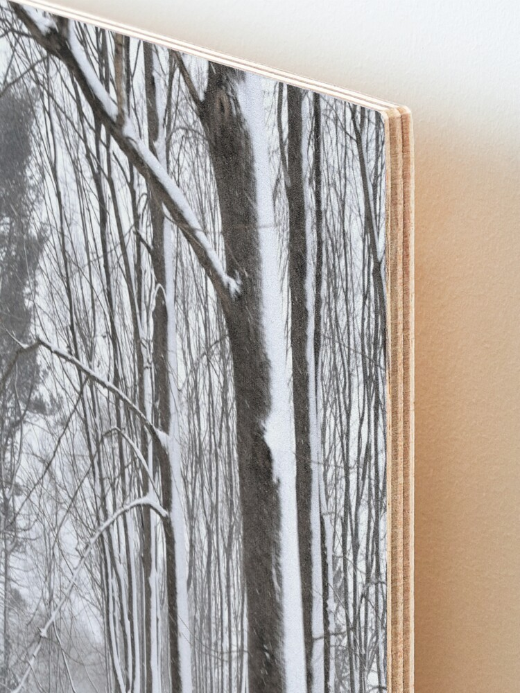 Alternate view of Winter Woods Mounted Print