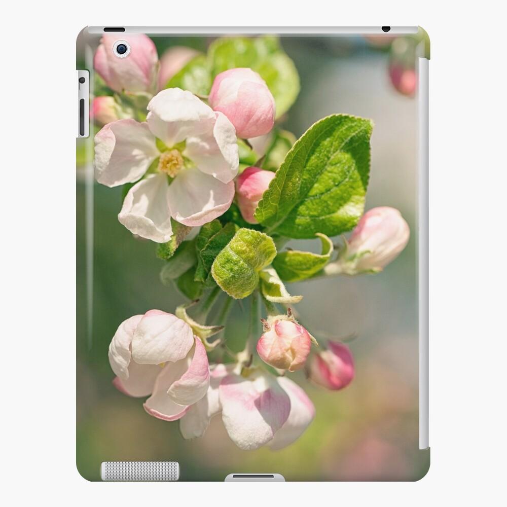 Flor de manzana Funda y vinilo para iPad