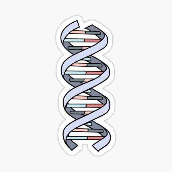 DNA Strand Sticker