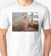 Pig Enjoying the Sun Unisex T-Shirt